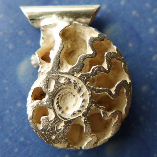 Versteinerung Schmuck Ammonit