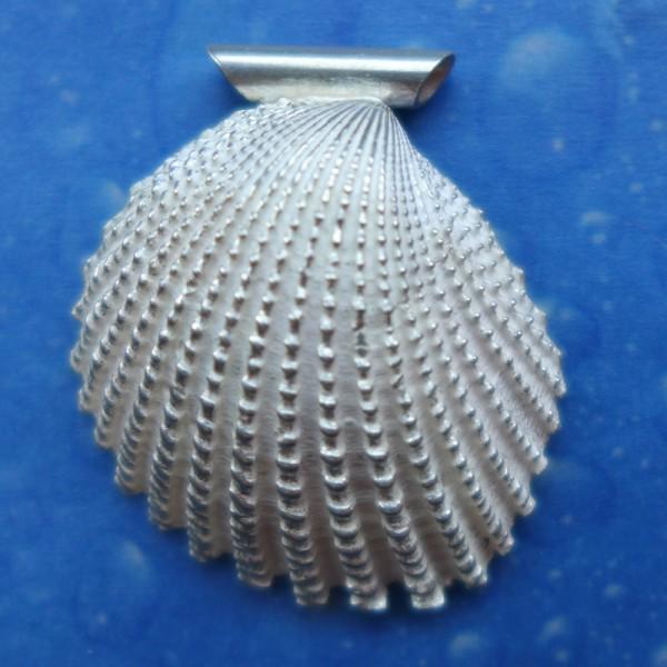 Muschelanhänger Silber mit toller Struktur