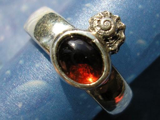 Kronenturbanschnecke mit Granat Ring