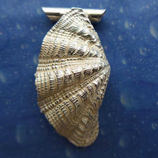 Tridacna Schmuck Silber Anhänger