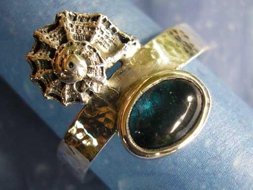 Kronenturbanschnecke mit Turmalin Ring