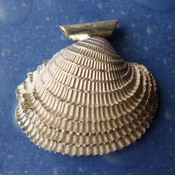 Silber Venusmuschel Anhänger Kette