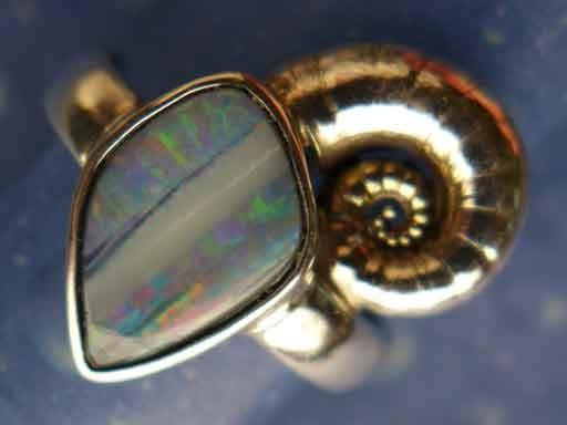 Posthornschnecke mit Opal Ring