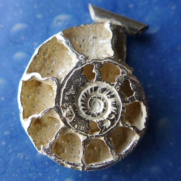 Ammonit Schmuck Fossil Anhänger