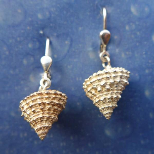 Strand Ohrringe Schnecke Schmuck