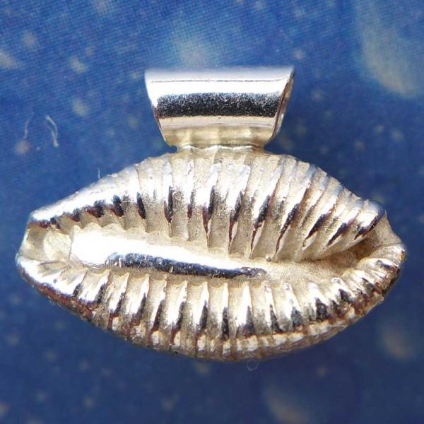 Kaurischnecke Silber Anhänger Schmuck
