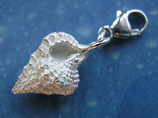 Unterwasser Schmuck Silber Tritonshorn