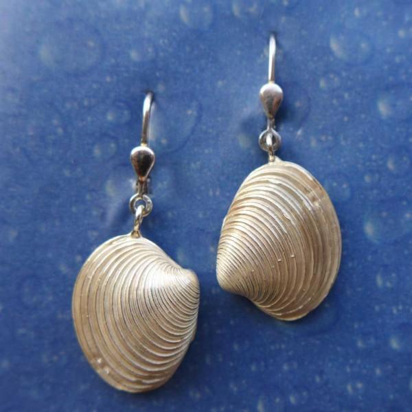 Schmuck Venusmuschel Ohrringe Silber