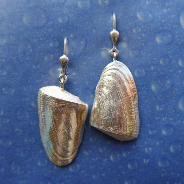 Meeresmotiv Muschel Ohrring Sägezahn