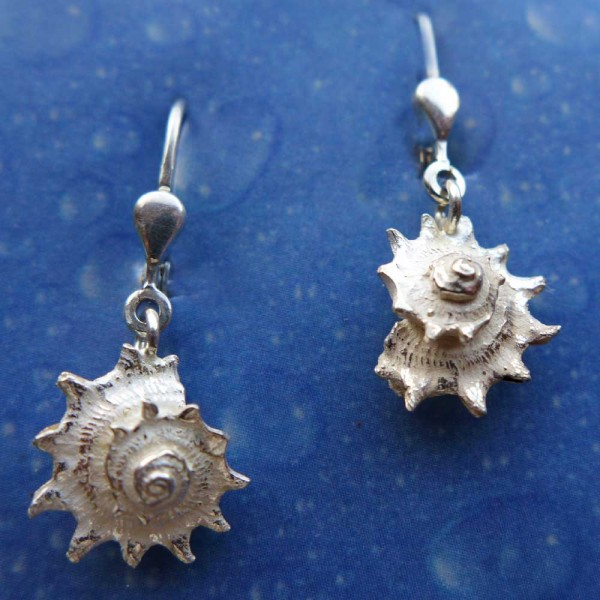 Ohrringe Schnecke Silber Schmuck