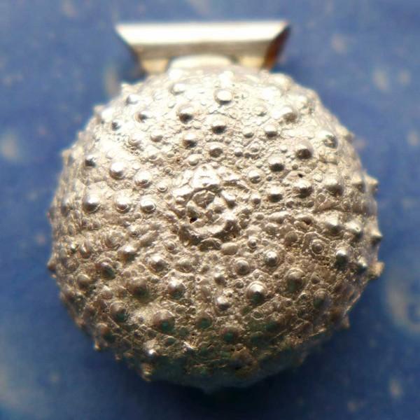 Taucherschmuck Seeigel Kettenanhänger Silber