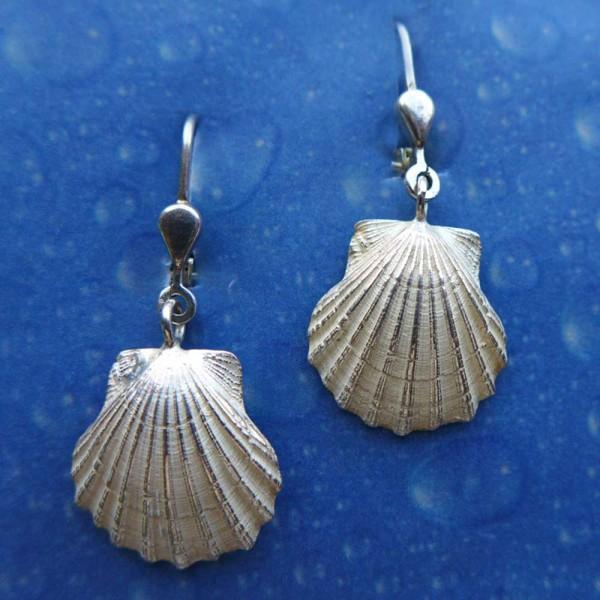 Pilgermuschel Silber Geschenk Ohrhänger