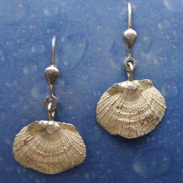 Ohrringe Silber Blatt Muschel Ohrhänger
