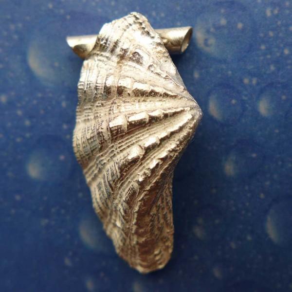Muschel Anhänger Mördermuschel Silber