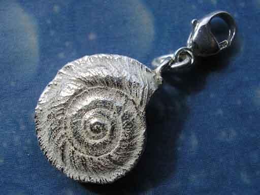 Schmuck Charm Silber Sonnenuhrschnecke