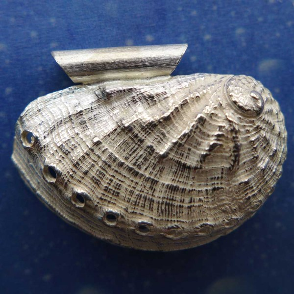 Schmuck Meerohr Anhänger Kette Silber