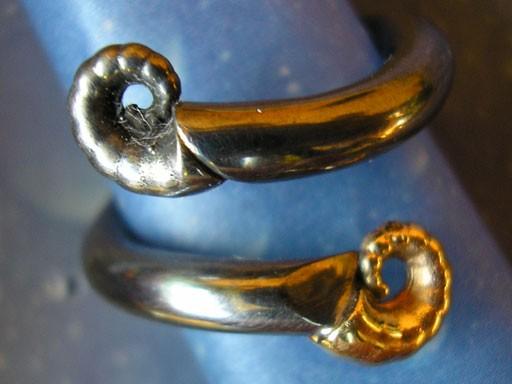 Muschelschmuck Schneckenschmuck Ring Silber Gold