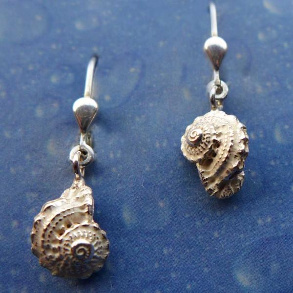 Ohrringe Schnecke Silber Unbekannte Schönheit