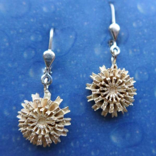 Ohrringe Silber Samen gesägt Ohrhänger