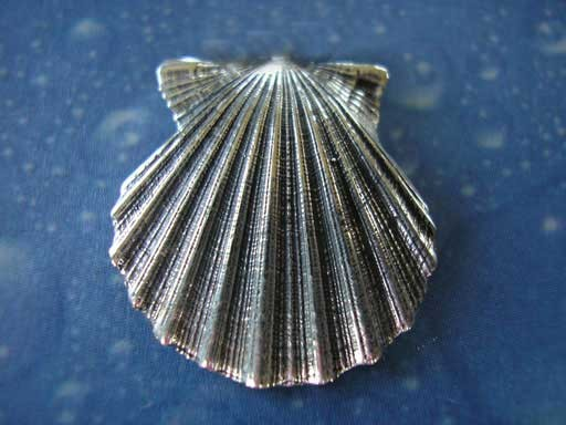 Pilgermuschel small Pin